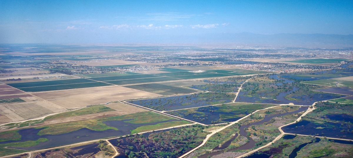Sustainable Conservation Releases Key Water Quality Guidance for On-Farm Recharge