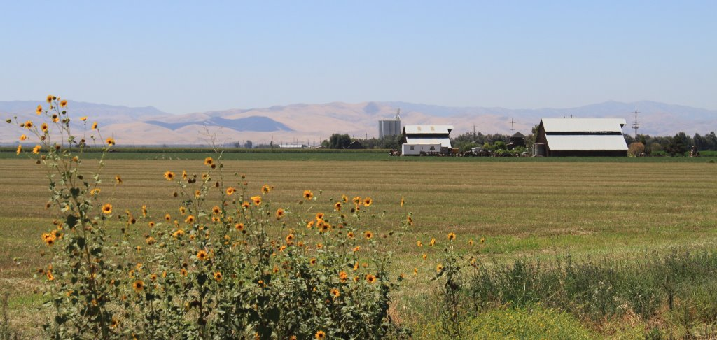 Mitigating Domestic Well Failure for SGMA and Drought in the San Joaquin Valley